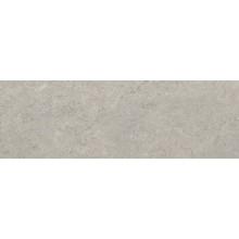 Faianta Concrete Grey 28x85