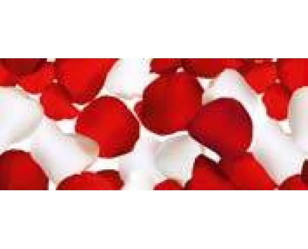 Decor Petals Rojo 30x70